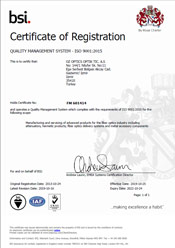 BSI Certificate of Registration Turkey